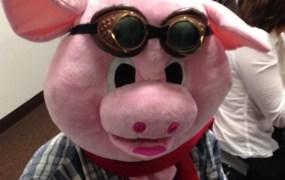 SigFig's mascot pig.
