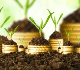 crowdfunding coins soil