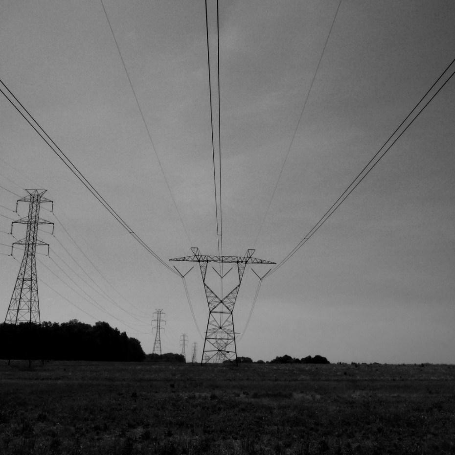Power Dendroica cerulia Flickr