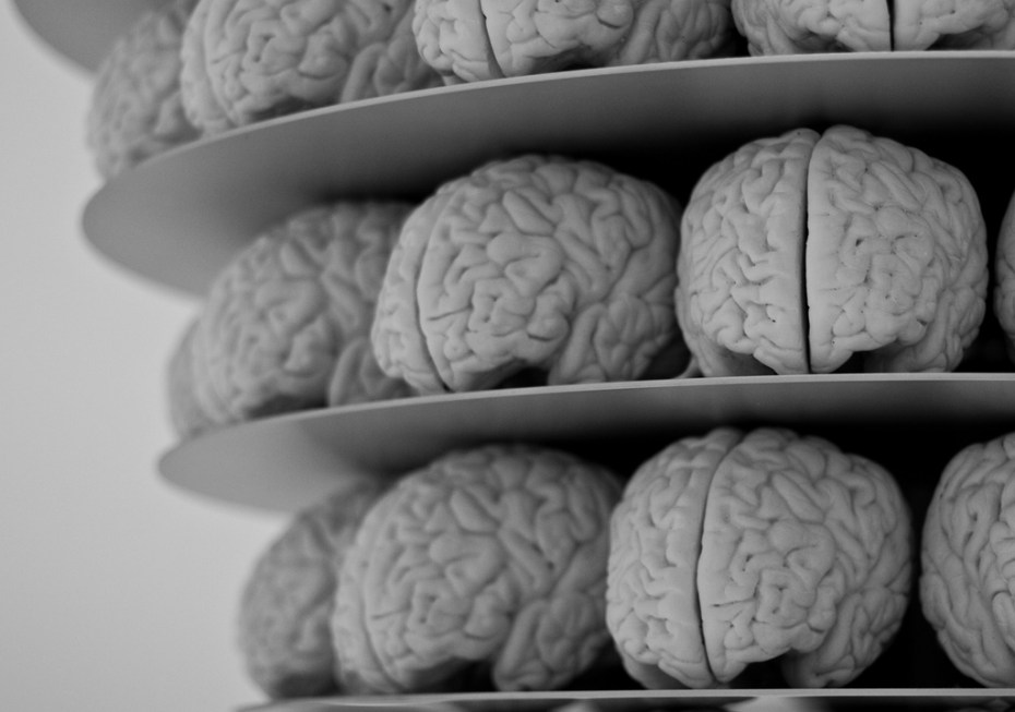 brains Neil Conway Flickr