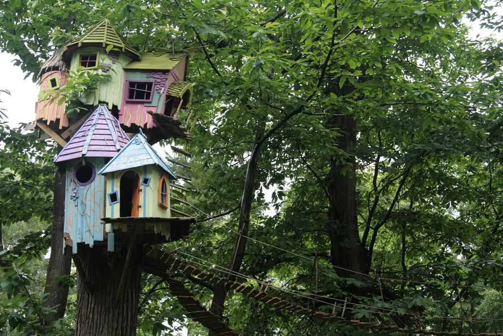 treehouse Karen Roe Flickr