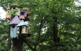 treehouse Karen Roe Flickr