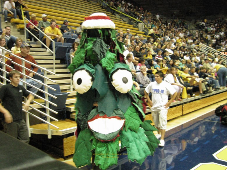 Stanford's intentionally hideous mascot, the Tree.