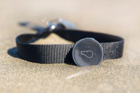 The WhistleGPS connector dog collar