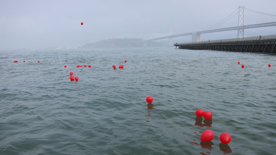 Hundreds of Homefront's balloons landed in San Francisco Bay.