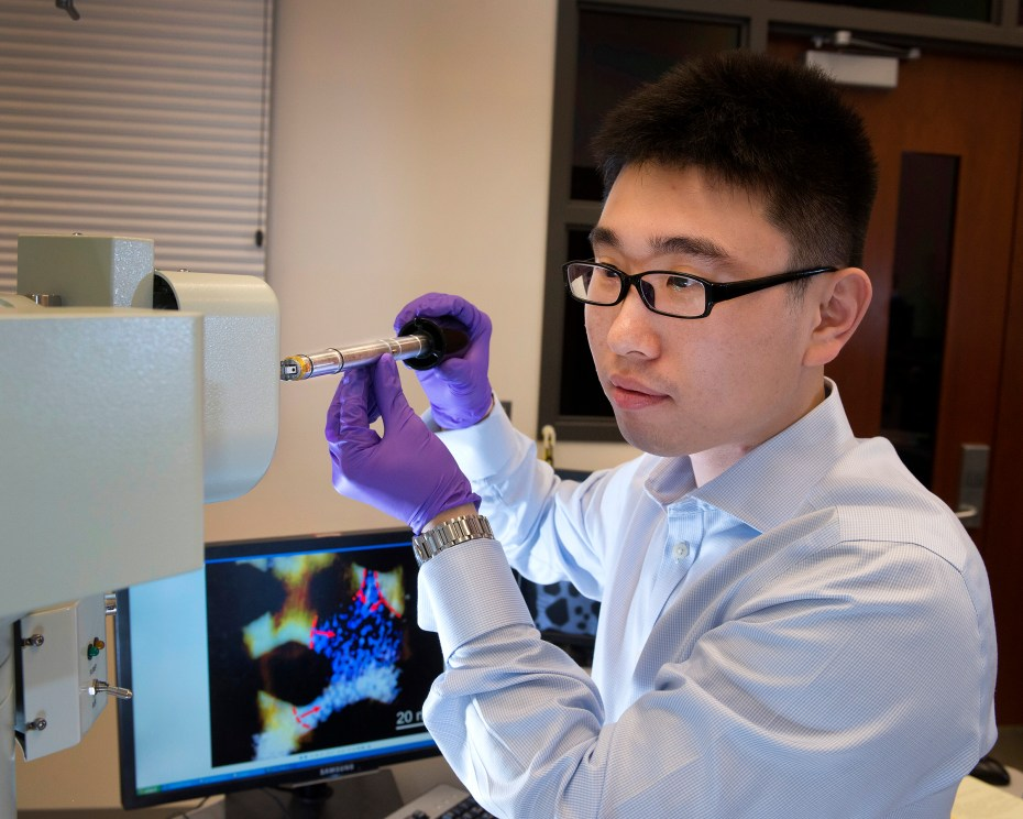 Materials scientist Huolin Xin in Brookhaven Lab's Center for Functional Nanomaterials.