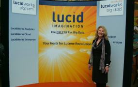 Lucid Imagination stand LucidWorks Facebook