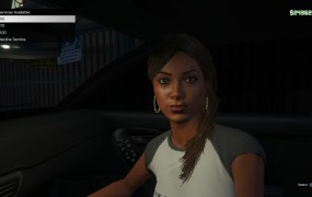 Engaging the services of a prostitute in GTA V's new first-person mode.