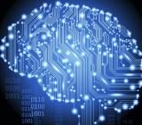 data-brain-