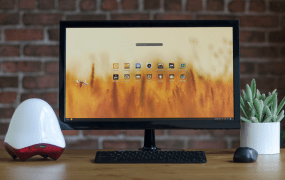 The Endless desktop computer (the small device to the left of the screen)