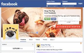 Screenshot of Doug the Pug Facebook Page