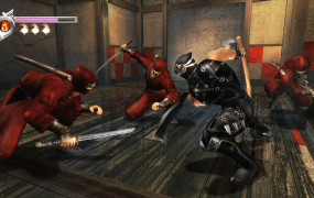 You may one day have an easy option to play Ninja Gaiden Black on your PC.