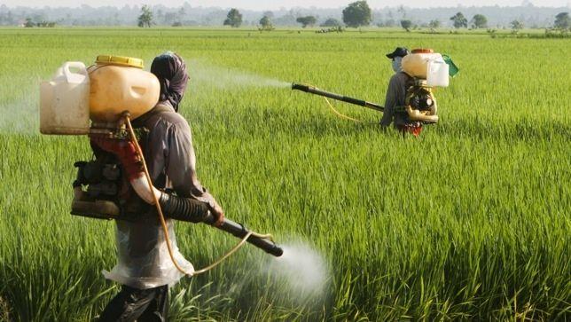 Resultado de imagen de Los Pesticidas