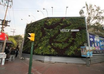 Impulsa ong jardines verticales ciudadanos en red for Jardines verticales historia