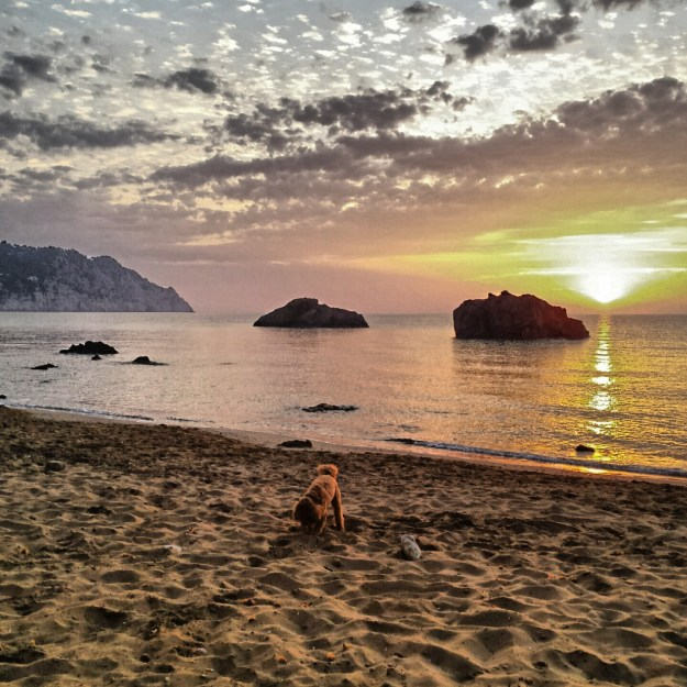 Ochtendwandeling op het strand Aguas Blancas