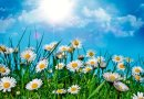 Какой будет погода в Днепре сегодня, 23 июля
