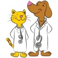 9721400-une-image-d-39-un-chat-et-chien-habille-comme-les-medecins-animal-de-compagnie