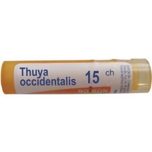 thuya_occidentalis_15_ch_-_80_granules_450x450