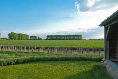 Cor-van-Hoeve-Meijers-04
