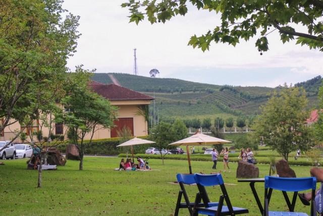 final-de-ano-no-vale-dos-vinhedos_wine_viajando-bem-e-barato