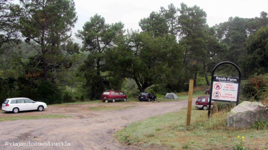 camping rotorua14