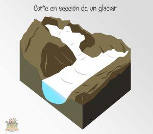 corte en seccion glaciar