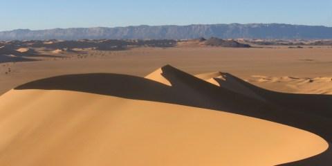 Reservas naturales del Aïr y el Teneré
