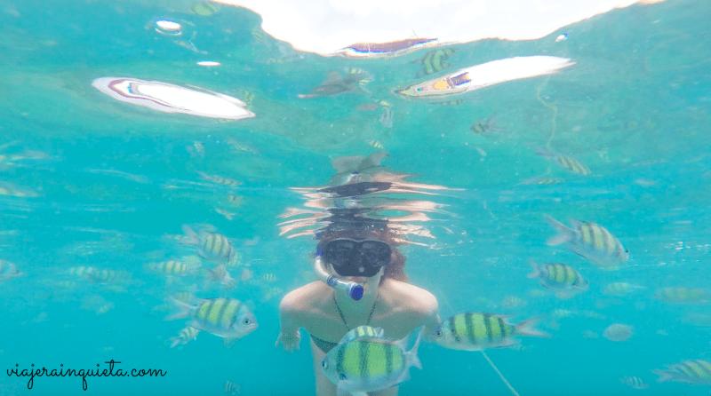 Snorkel en Phi Phi Tailandia
