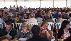 jornadas vinicolas y gastronomicas frailes