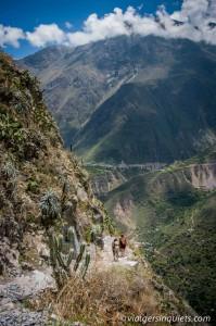 270216_Peru_552