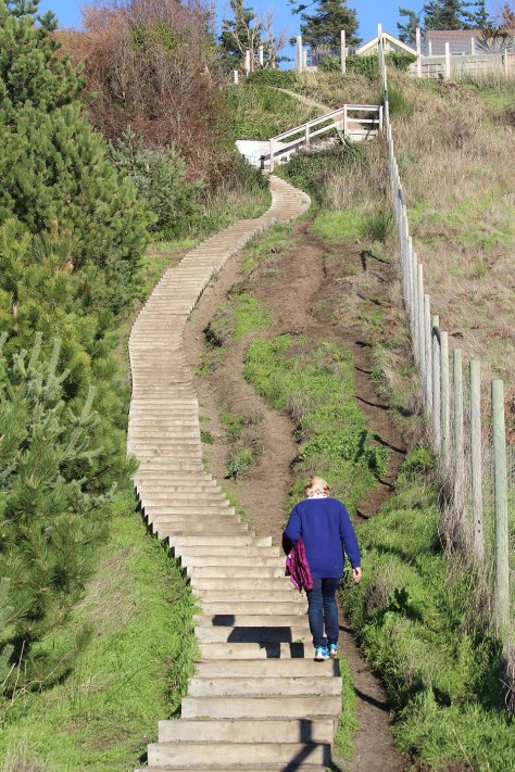 Goose Spit stairs