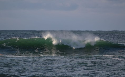 Palmerston surf2