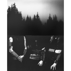 Small Crop Of Black Metal Art
