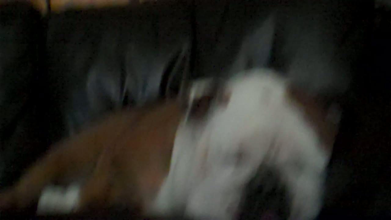 2011-03-08 08 32 02