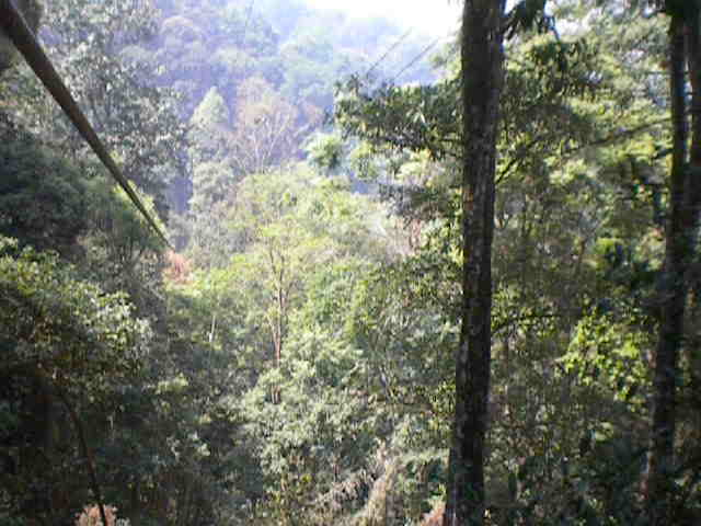 2012-03-06 &#8211; Chiang Mai, Thailand &#8211; 800m Zipline