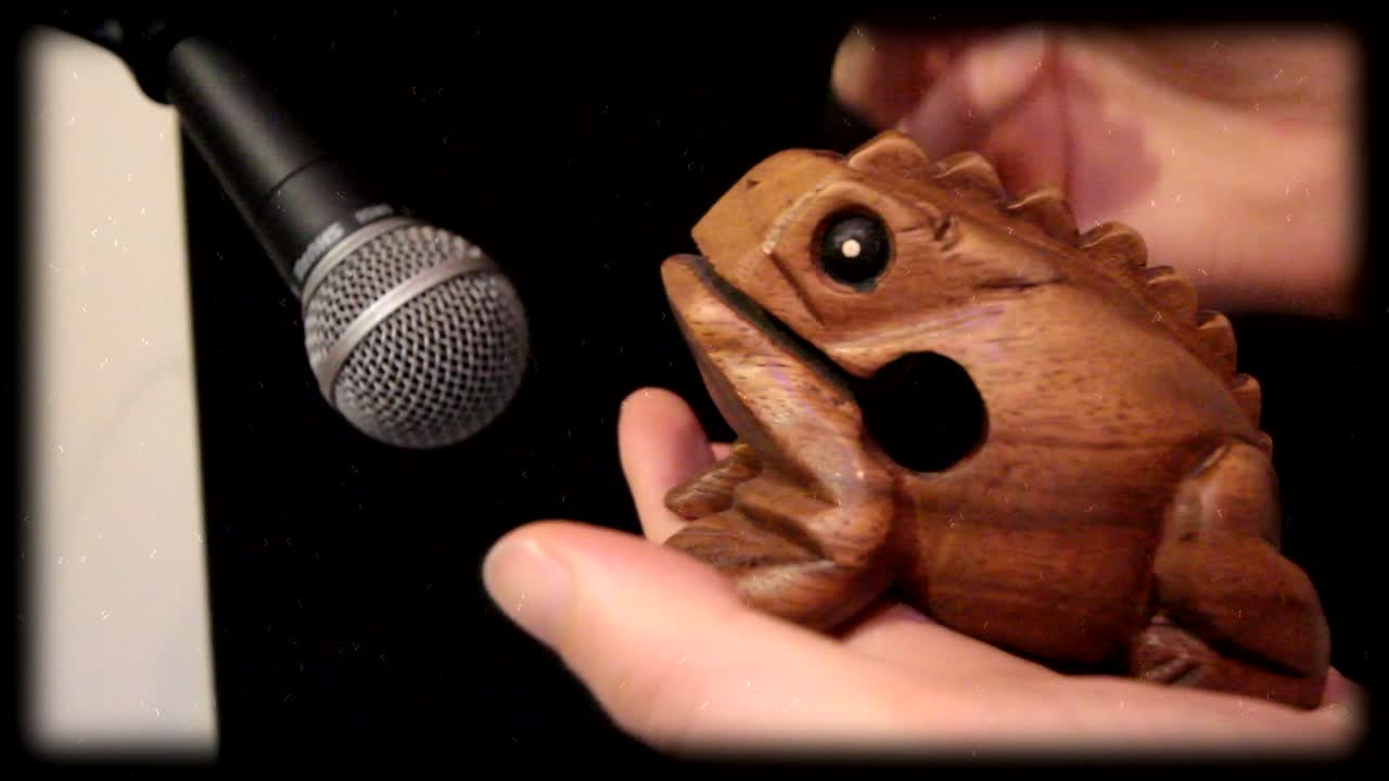 The Wooden Frog