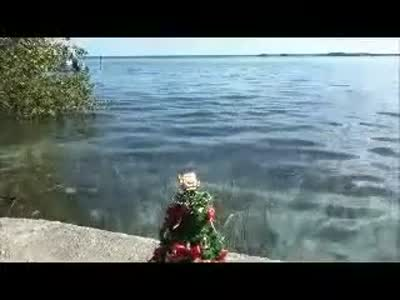 bacalar-holiday-greetings.mp4