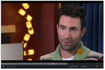 Adam Levine on CBS Sunday Morning June 2 2013