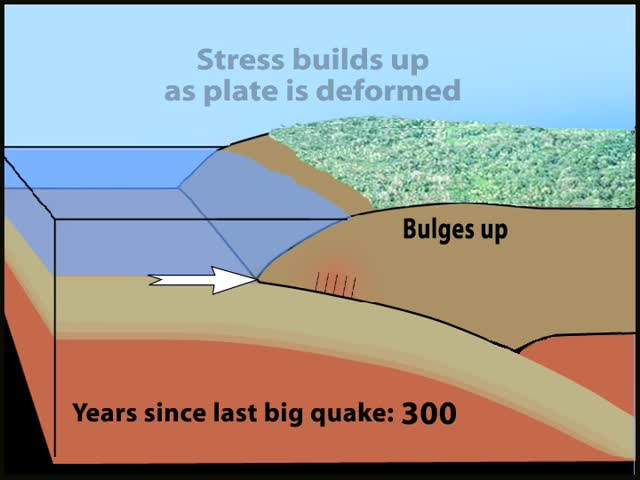 ElasticRebound_Subduction