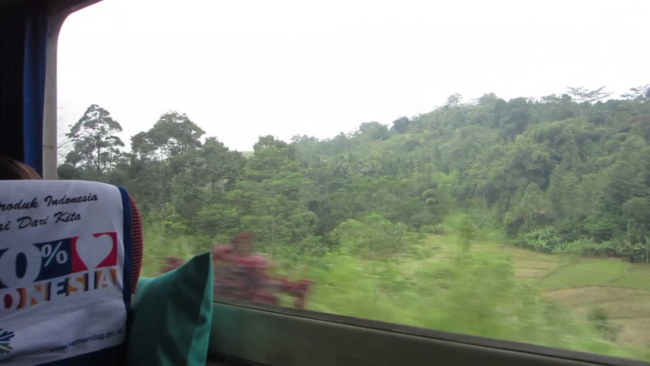 Train through the Indonesia countryside