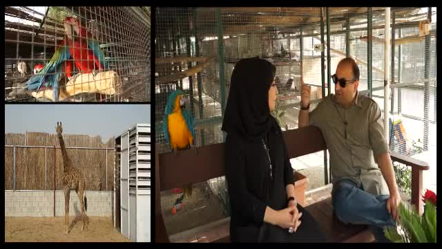 The Pet Farm in Khawaneej Dubi