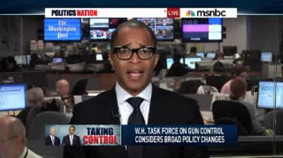 PoliticsNation  Previewing the gun control panel's plans