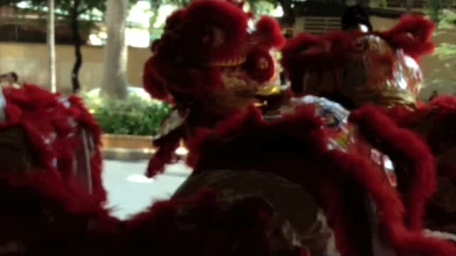 Saigon Lion Dance