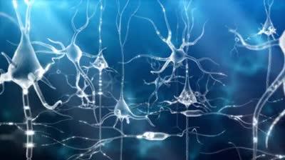 shutterstock_v2970007_eye and neurons