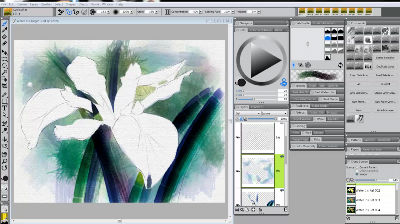 Video 5 – Painting the flower