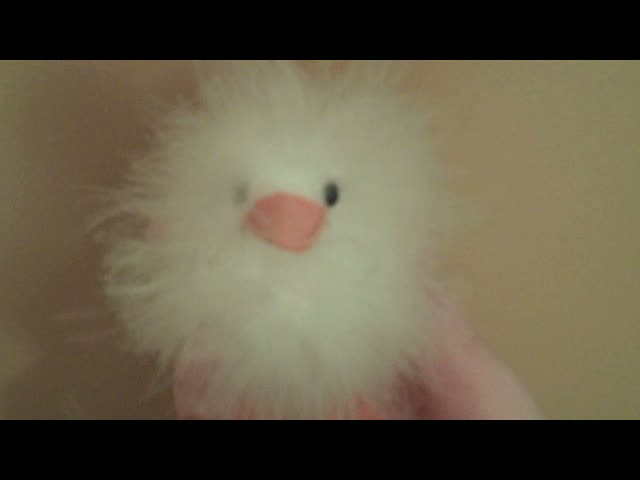 FUZZY DUCK LOVES YOU