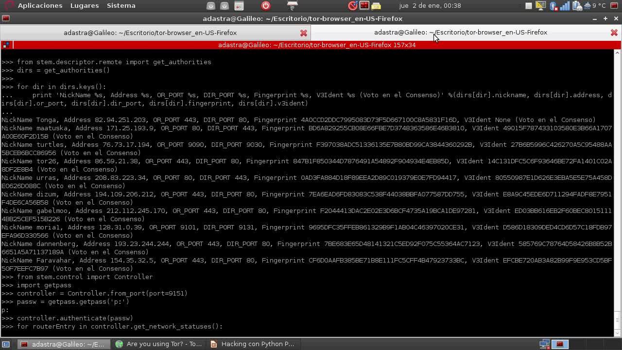 Hacking con Python Parte 24 – Consulta de descriptores de TOR con Stem