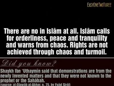 Ruling on Peaceful Demonstrations – Shaykh Saalih al Fawzan