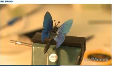 Microsofts Wacky Butterfly