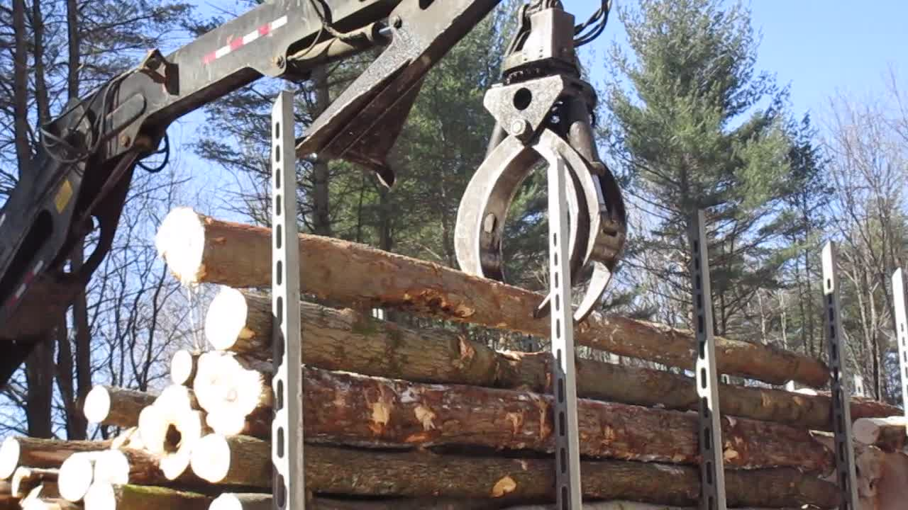 Loading Lumber